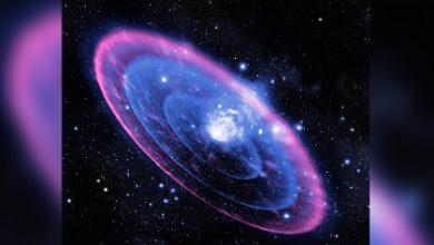 süpernova nedir